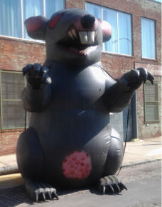 union-rat-7424830