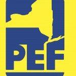 pef-150x150-6903268
